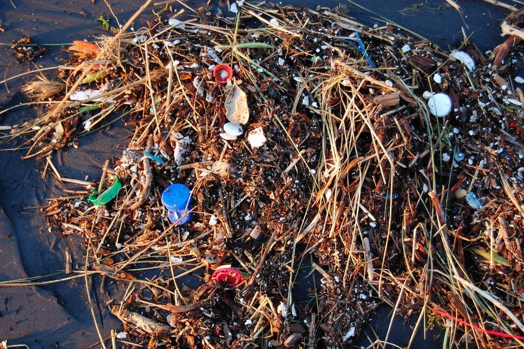 pollution-marine-recyclage-pollution-biodiversité2