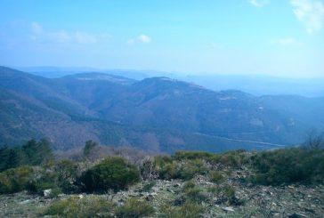 La randonnée M.J.C. à l'arborétum de l'Espaze