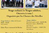 Stage de chant – Choeurs des Sitelles