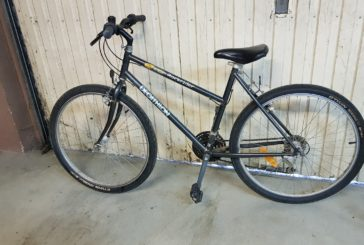 Vélos trouvés…