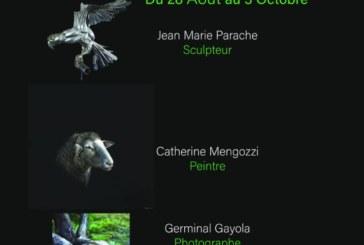 Exposition animalière