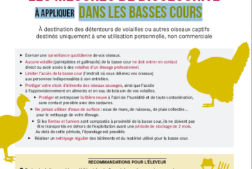 Influenza aviaire : information importante